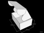KJV12